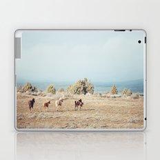 Oregon Wilderness Horses Laptop & iPad Skin