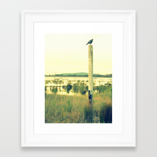 Magpie watching Framed Art Print