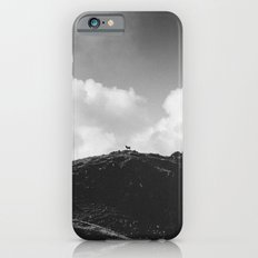 Lone Sheep on a Hill iPhone 6 Slim Case