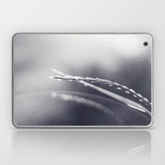 Evening Light in Black and White Laptop & iPad Skin