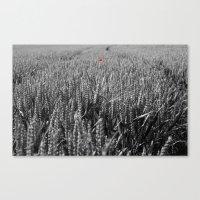 Summer Fields #6 Canvas Print