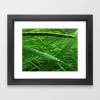 Montana Green Framed Art Print