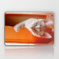 Lili  Laptop & iPad Skin