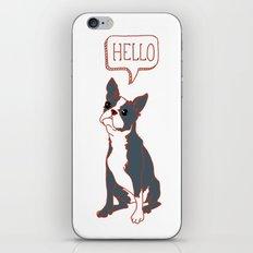 Boston Terrier, Hello, Red, Black, Grey iPhone & iPod Skin