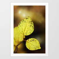 yellow leaves. Art Print