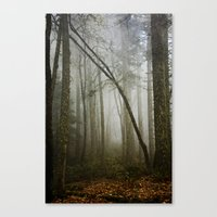 Canvas Print featuring Misty Woods by Lawson Images