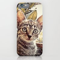 iPhone & iPod Case featuring Mouser by John Medbury (LAZY J Studios)