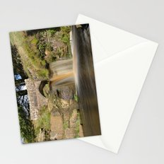 Panniers pool 1 Stationery Cards