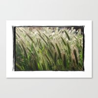 Soft Breeze Canvas Print