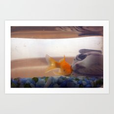 Fish in trouble Art Print