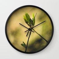 Spring at Nesmith Point Wall Clock