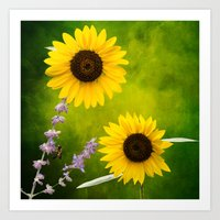 Sunflowers.  Art Print