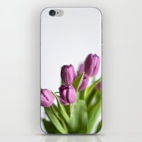 Purple Tulips iPhone & iPod Skin
