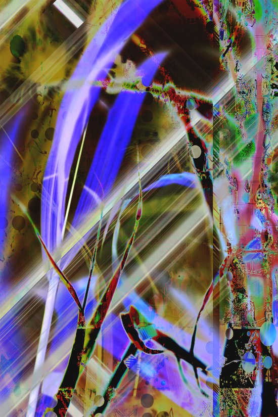 Crazy Nature Abstraction Art Print