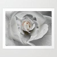 Tears In The Rosegarden Art Print