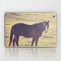 Chesnut Horse Laptop & iPad Skin