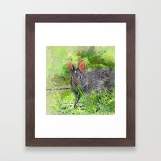 Baby Bunny Meadow Framed Art Print