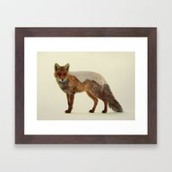 Mountain Fox Framed Art Print