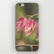 Spring in the city iPhone & iPod Skin