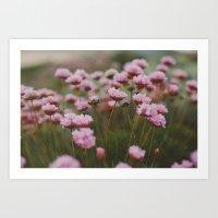 Pale Pink Art Print