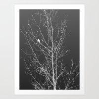 Modern Winter Art Print