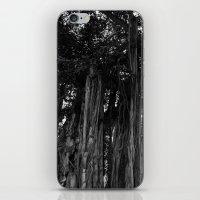 The Banyan iPhone & iPod Skin
