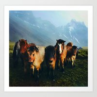 The Friends We Made In Iceland Art Print