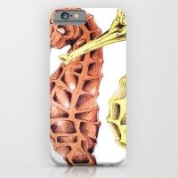 SeaHorses iPhone 6 Slim Case