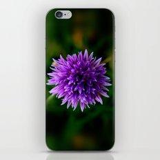 Chive iPhone & iPod Skin