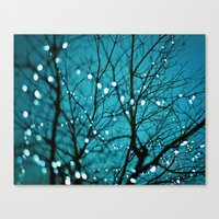 tree photograph. Wonder Canvas Print