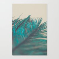 Turquoise Feather Abstra… Canvas Print