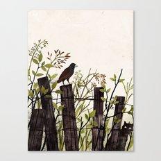 Art of Bird Watching Canvas Print