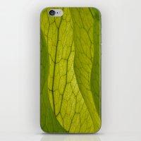 Inside the Leaf! iPhone & iPod Skin