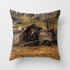 Visions Of The Past Throw Pillow