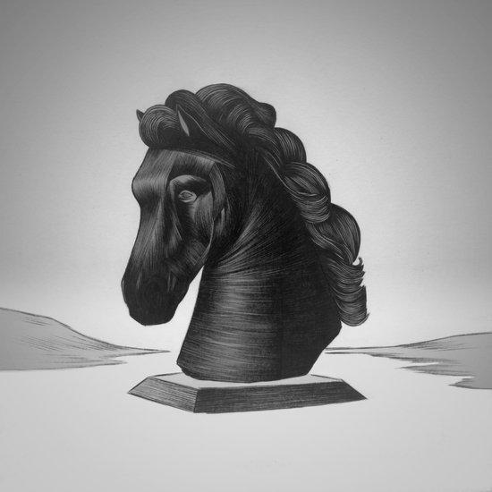 horse no.4 Canvas Print