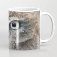 Little Owl Mug