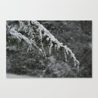Snowy Day 3 Canvas Print