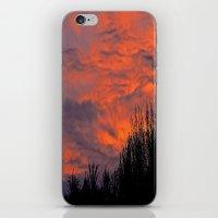 August Sunset iPhone & iPod Skin