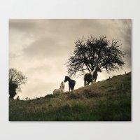 caballos Canvas Print