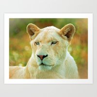 LIONESS LOVE Art Print