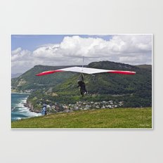 Flight for Two  Canvas Print