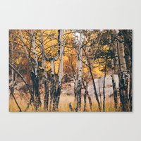 near the campground .  Canvas Print