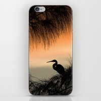 Home To Roost iPhone & iPod Skin
