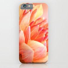 Dahlia Glow Macro iPhone 6 Slim Case