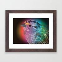 Rainbow Bird Framed Art Print