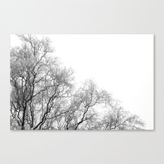 A tree and his crown in winter I Canvas Print