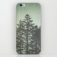 Trees in Fog iPhone & iPod Skin
