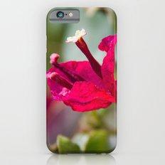Take Time iPhone 6 Slim Case