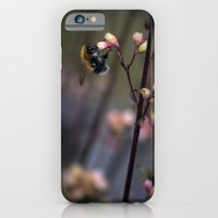 iPhone & iPod Case featuring Bumblebee by Anna Brunk