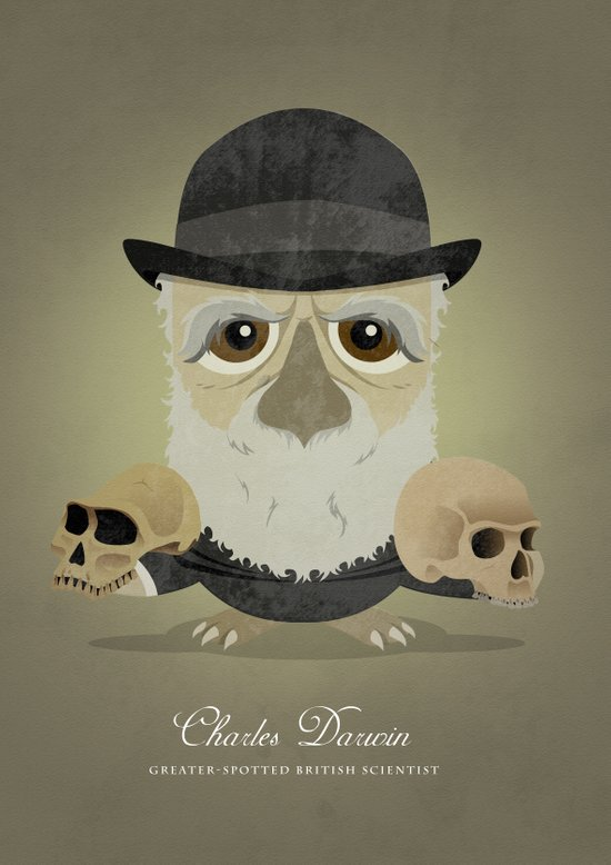 Charles Darwin - Greater-spotted British Scientist - as an owl. Art Print